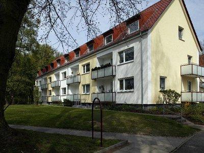 Vorschaubild des Vermietungs-Angebots 'Großzügige Single-Wohnung'