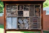 Vorschaubild für die Download-Datei Unterkunft für tausende Sechsbeiner - gebaut nach ökologischen Standards