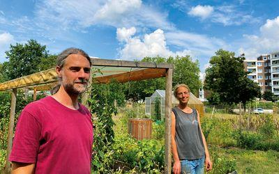 Vorschaubild für den Artikel 'Das Glück beim Gärtnern'